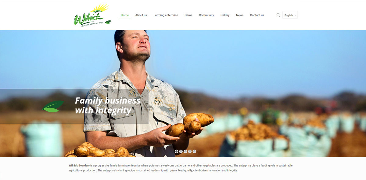 Website Design wilnick