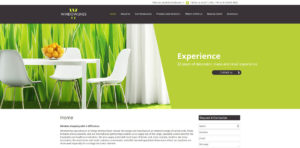 Website Design windowlines